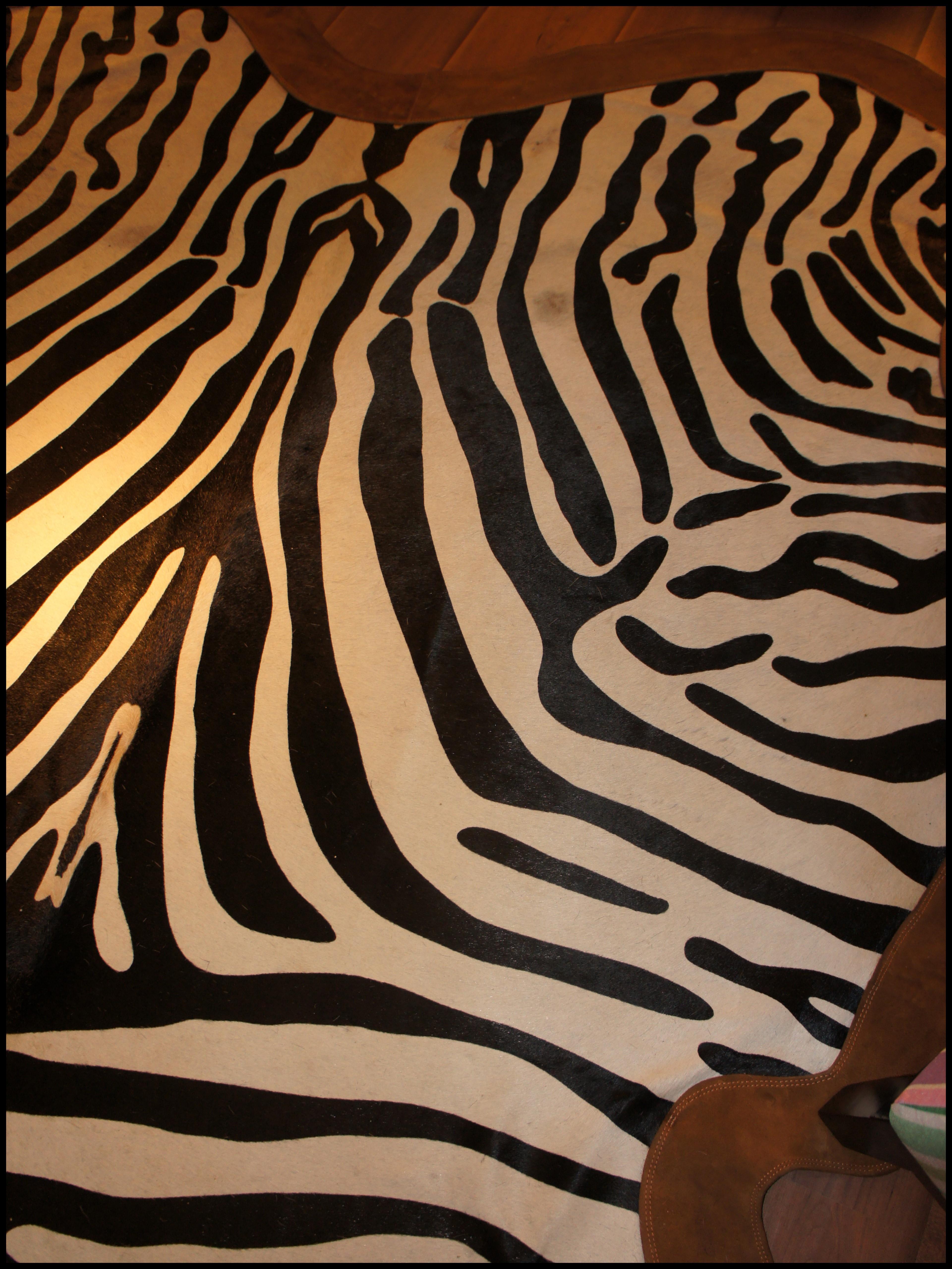 Zebra for Zebra tapete